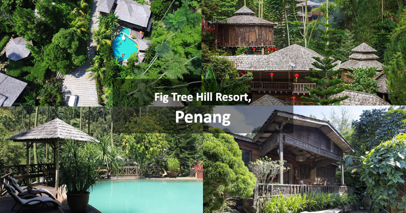 Fig Tree Hill Resort, Penang